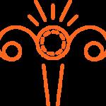 icono-endometriosis